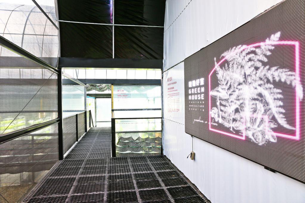 Greenhouse as a Home tham gia vào các vấn đề ánh sáng