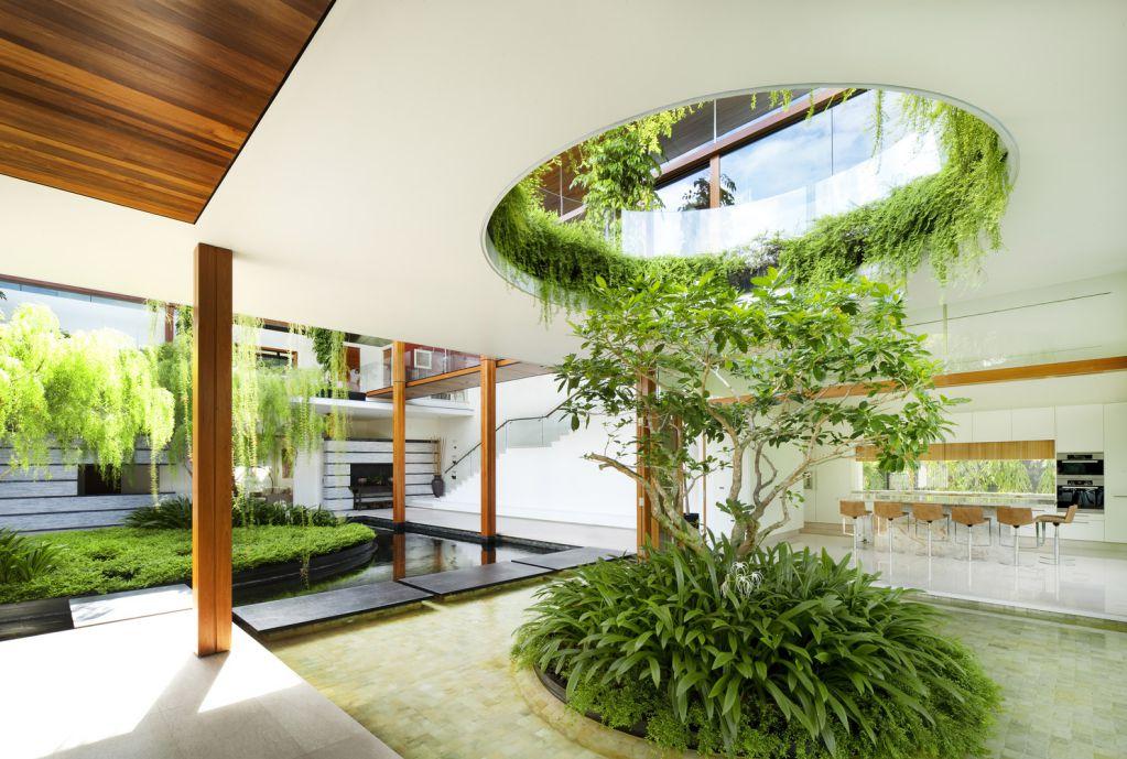 Willow House thiết kế mở ra không gian xung quanh