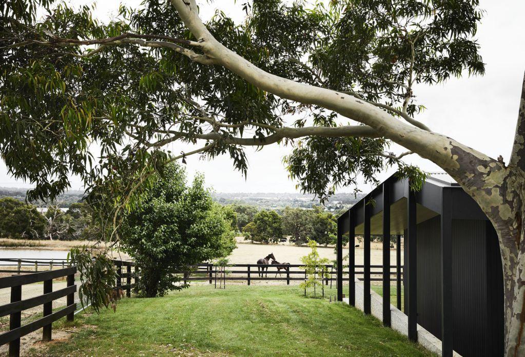 Ngôi nhà được bao quanh bởi một mái hiên