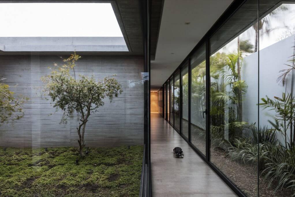 Thiết kế khu vườn bên trong của ngôi nhà
