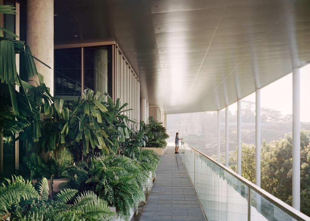Dự án thiết kế kiến trúc trường học Nus School tại Singapore