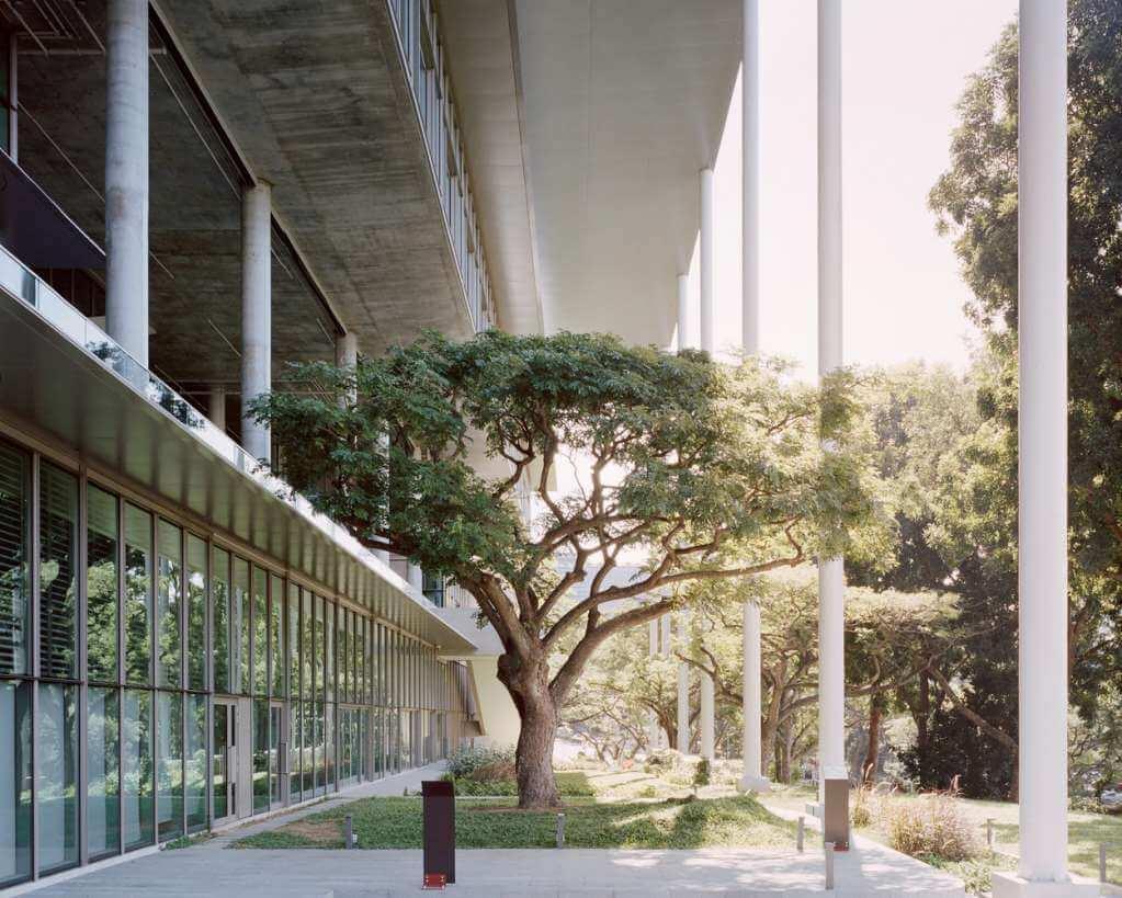 Nus School là một tòa nhà năng lượng thiết kế mới